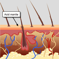 protection_acid_mantle