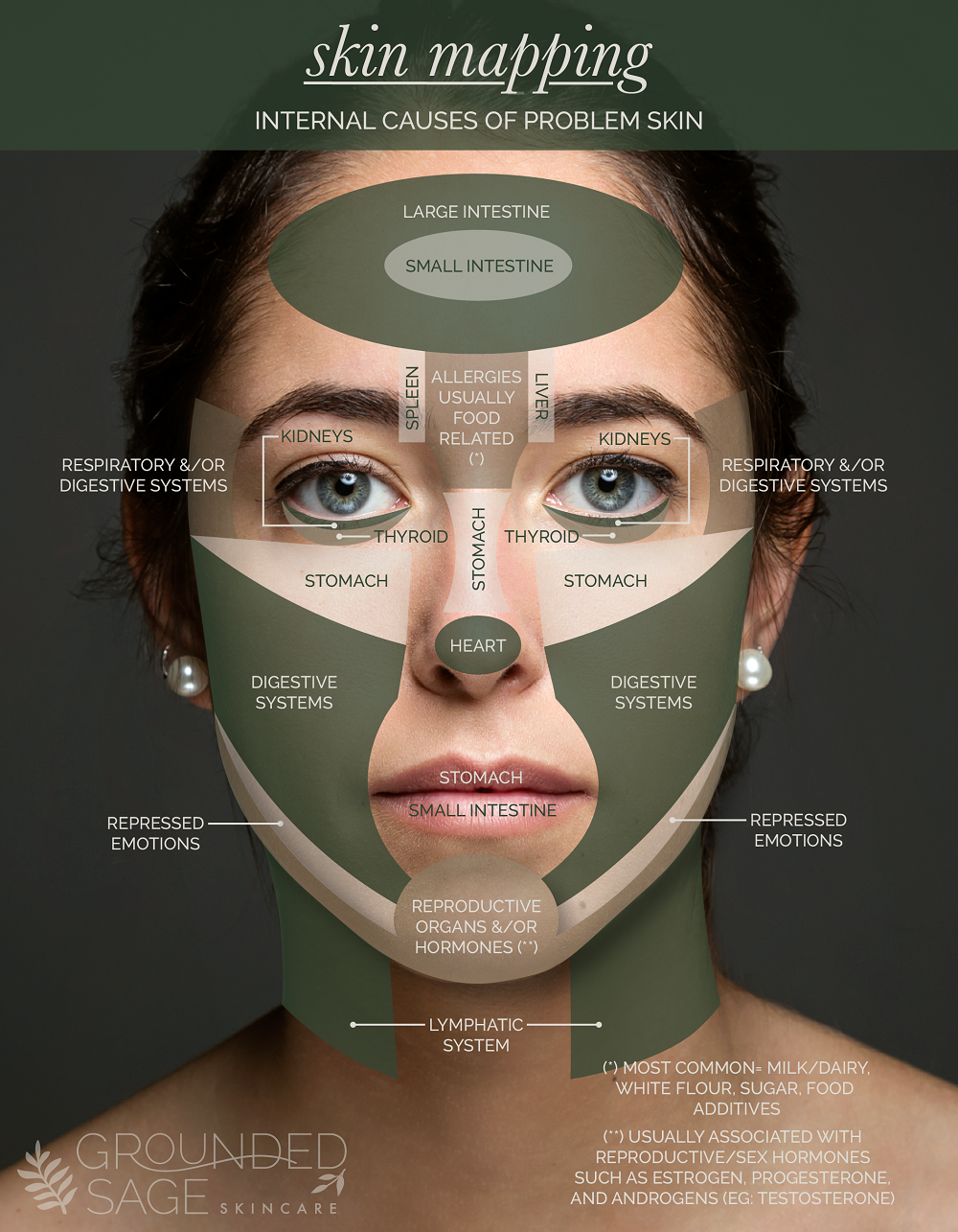 Face Mapping / skin mapping / acne explained / internal causes of acne / holistic beauty / green beauty