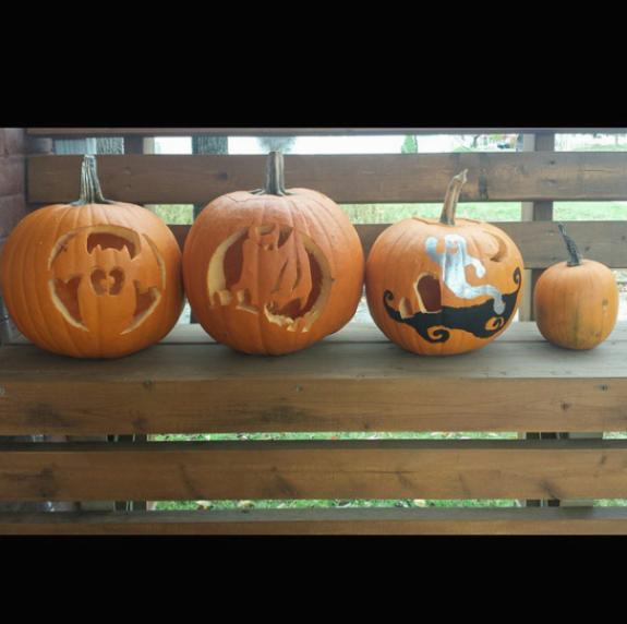 Batty's pumpkins