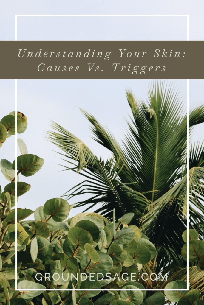 causes vs triggers skincare / skin conditions / holistic skincare / green beauty / internal causes of acne
