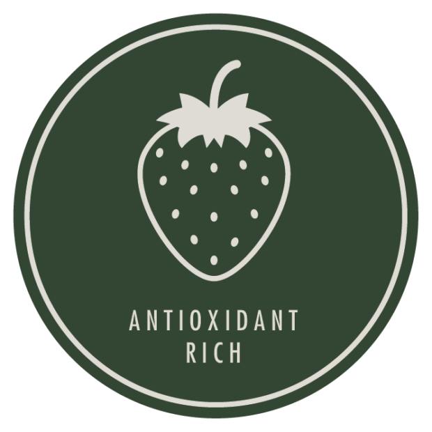 Antioxidant rich products icon / skin care