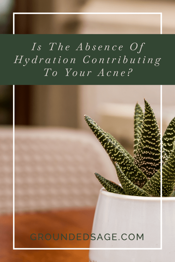 hydration for acne-prone skin / acne skincare / acne solutions / dehydrated skin / thirsty skin / dry skin / pore cleansing / green beauty