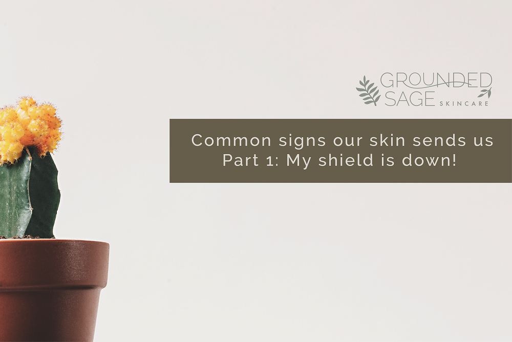 Common signs our skin sends us Part 1: My shield is down!