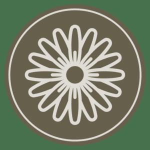 desert marigold icon
