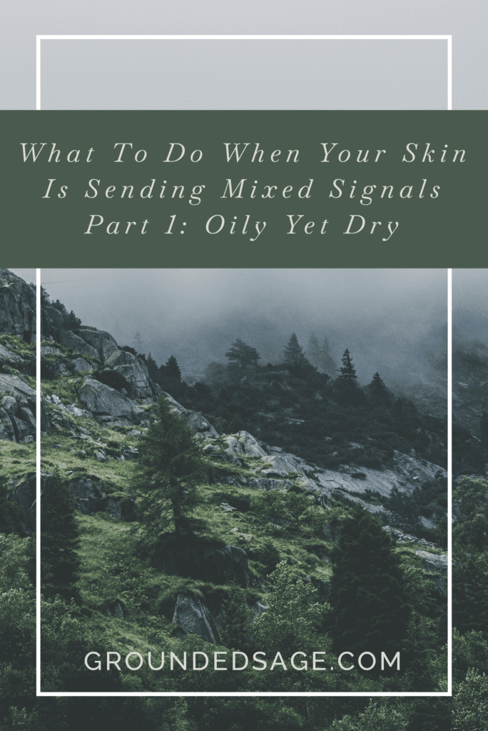 What to do when your skin is sending mixed signals part 1 - oily & dry skin / mindful skincare / green beauty / eco beauty