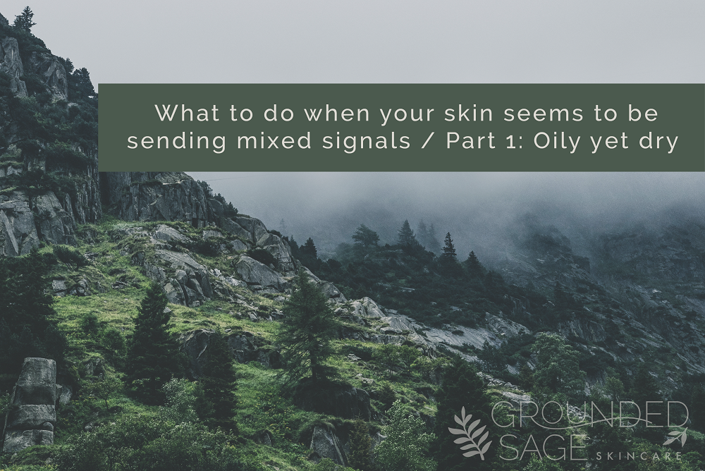 What to do when your skin seems to be sending mixed signals part 1: Oily yet dry