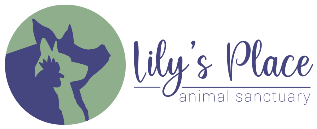 Lily's Place Animal Sanctuary