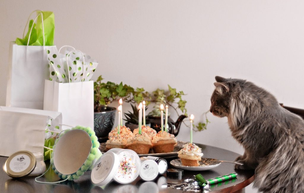 Skincare Birthday Party Kitty - everyone loves clear kind cruelty free beauty