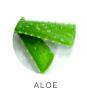 Aloe Vera Foundation