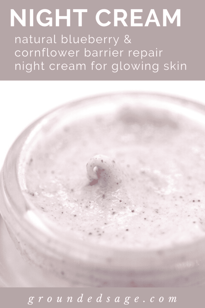 Antioxidant Night Cream - natural blueberry and cornflower barrier repair night cream for glowing skin - skincare products for face
