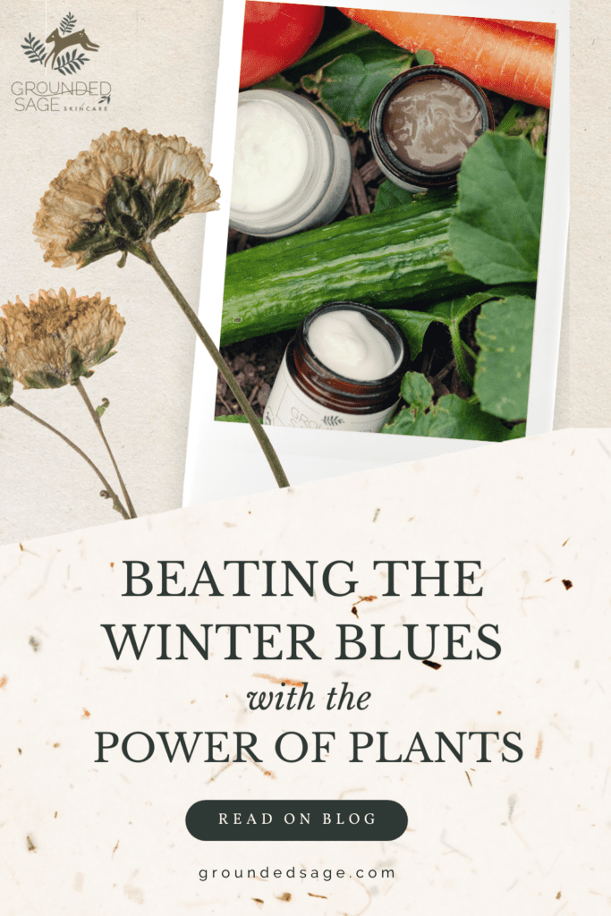 beating the winter blues - plant based remedies for mood boosting winter self care - healthy foods and plants for your body and skin