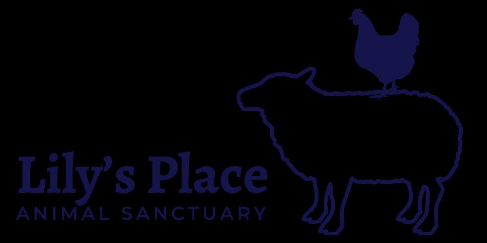 Lily's Place Animal Sanctuary - Microsanctuary New Brunswick Canada - rescue for farm animals